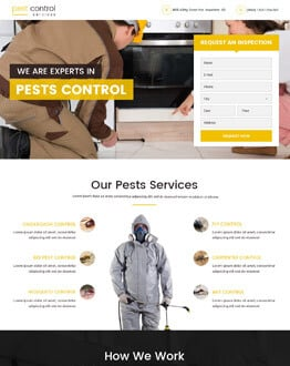 Maximum Exposure With Pest Control Landing Page design
