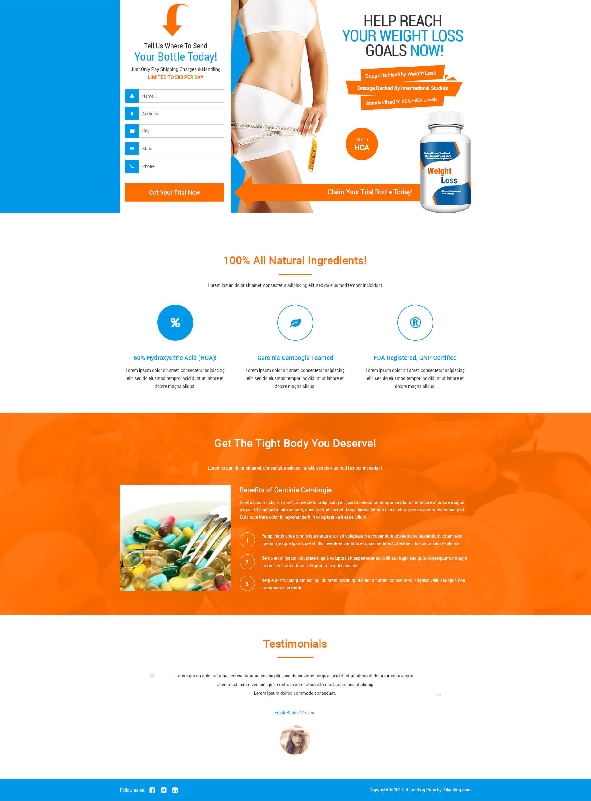 lead gen responsive weight loss squeeze page template with free